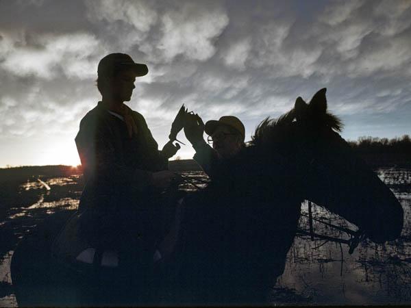 Snipe Hunt | Darkwood Brew
